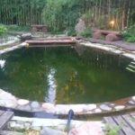 bassejn-dlya-dachi-foto (6)